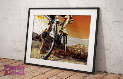 BICYCLE POSZTER